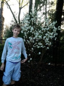 Jules and his serviceberry bush